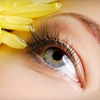 Up to 65% Off Eyelash Extensions in La Mesa