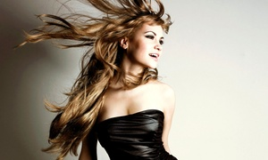 Launey's Club Salon with Nikki Fard: Haircut, Style, and Optional Color Retouching or Highlights at Launey's Club Salon with Nikki Fard (Up to 55% Off)