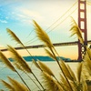 70% Off Photography Class in San Francisco