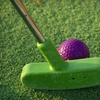 Up to 57% Off Mini-Golf Outing in Seekonk
