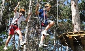 BUSATTE ADVENTURE: Ingresso al parco avventura con 5 percorsi per una o 2 persone da Busatte Adventure (sconto fino a 44%)