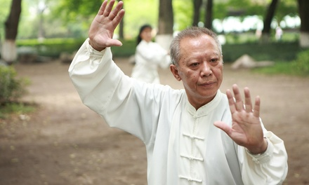 Private Tai-Chi Class for One or Two at Movements of Magic
