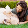 Up to 54% Off Dog Waste Removal Services
