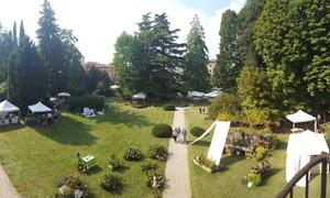 Castello di Thiene SRL: Viridalia: mostra mercato di giardinaggio e confezione di biscotti naturali - 9 e 10 settembre al Castello di Thiene