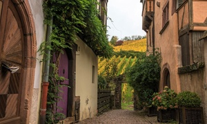 Alsace : Chambre double Standard avec pdj, sauna et visite de cave Sélestat