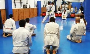 Dojo Dento Ryu - Escuela de Artes Marciales : 1 o 3 meses clases artes marciales a elegir entre varias disciplinas para adultos o niños desde 12,90€ en Dojo Dento Ryu