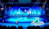 【最大16%OFF】冬のシーパラは季節毎のイベント満載!「海の動物たちのショー」が大きくリニューアル! ≪ワンデーパス / 大人・高校生...