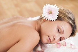 Maple Seed Wellness: $38 for an Acupuncture Treatment with Cupping — Maple Seed Wellness ($125 Value)