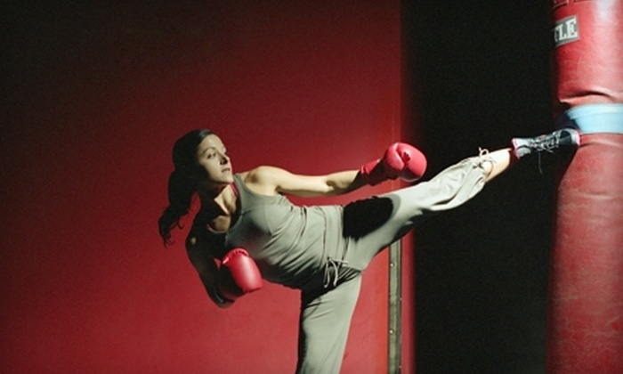 Asian Sun Martial Arts and Fitness - Multiple Locations: $30 for One Month Unlimited Kickboxing Classes at Asian Sun Martial Arts and Fitness ($60 Value)