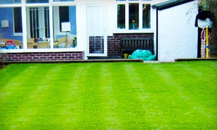 Ace of Blades - Ottawa: Full-Yard Core Aeration or Lawn Soil-Booster Treatment from Ace of Blades