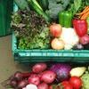 54% Off Organic Produce Box at Grant Family Farms