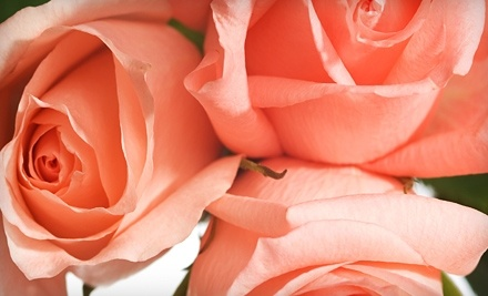 $40 Groupon to Reynebeau Floral - Reynebeau Floral in Little Chute