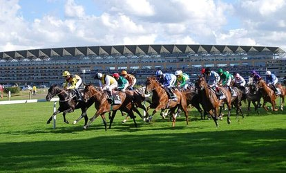 Up to 12-Month Horse Racing Club Membership at The Golden Horse Racing Club (Up to 78% Off)