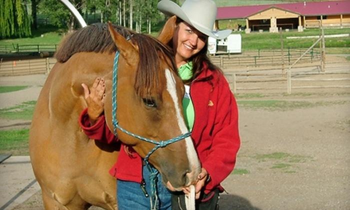 Horsin' Around Natural Horsemanship - Rocheport: $45 for Three One-Hour Horseback-Riding Lessons at Horsin' Around Natural Horsemanship ($90 Value)
