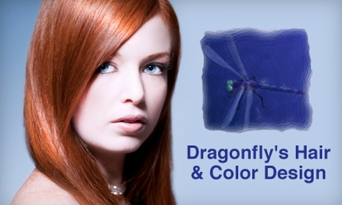 Dragonfly's Hair and Color Design - Summerfields: $45 for $100 Worth of Salon Services at Dragonfly's Hair and Color Design