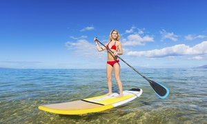 Rhode Island Paddle Sports: Kayak or Paddleboard Rental for One or Four at Rhode Island Paddle Sports (Up to 54% Off)