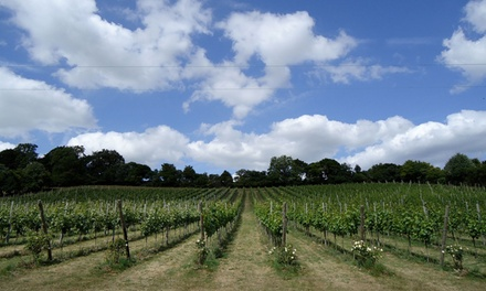 Daws Hill Vineyard