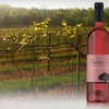 Noboleis Vineyards - Boone: $15 Worth of Wine and Tastings