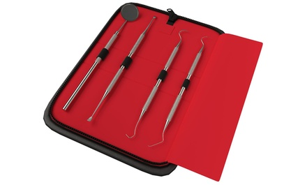 Dental Kit with Protective Case (4-Piece)