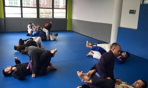 Lifestyle MMA: $25 for One Week of Unlimited Classes at LIfeStyle MMA Academy ($99 Value)