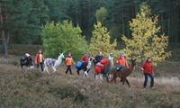 Halbtagstour Lama Trekking für 2 Personen in der Lüneburger Heide von Heide Lama Trekking (38% sparen*)