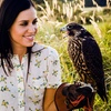 Archery and Falconry Experience