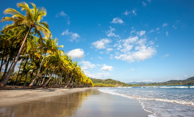 TripAlertz wants you to check out ✈ 8-Day Vacation in Costa Rica with Air from Great Value Vacations. Price per Person Based on Double Occupancy. ✈ 8-Day Vacation in Costa Rica with Air from Great Value Vacations - Costa Rica Vacation with Air