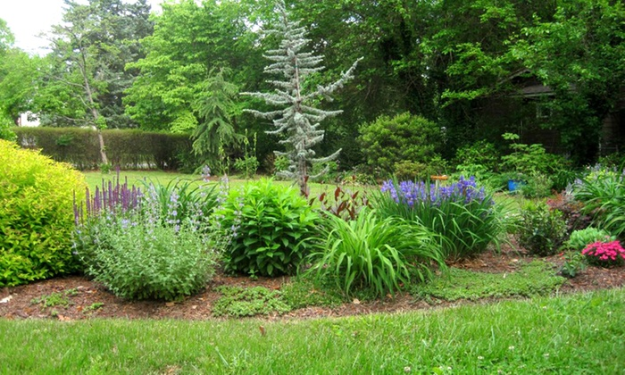 Natural Progression Landscaping - Richmond: $299 for Six Hours of Professional Landscape Design from Natural Progression Landscaping ($650 Value)