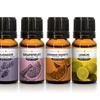 Serene Living Pure Essential Oils (3- or 6-Pack; 0.33 Fl. Oz.)