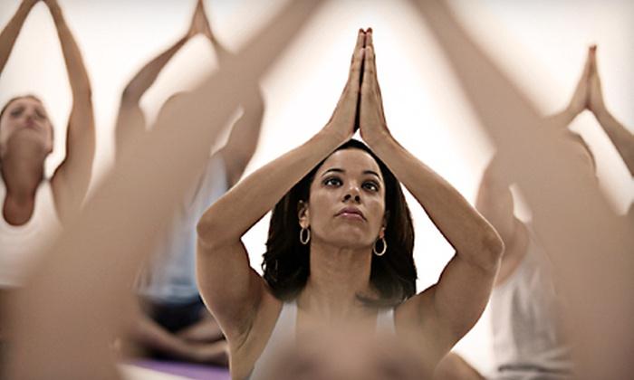 Shiva Shakti Yoga Center - South Side: 10 or 15 Yoga Classes at Shiva Shakti Yoga Center in Waltham