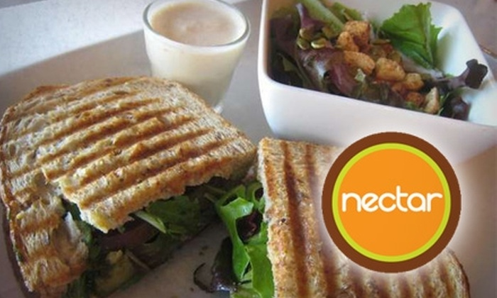 Nectar - Atlanta-Decatur: $10 for $20 Worth of Smoothies, Paninis, and More at Nectar in Decatur