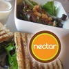 $10 for Smoothies, Paninis, and More in Decatur