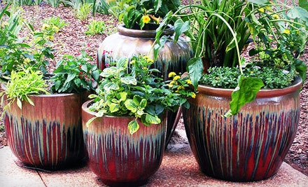 $30 Worth of Pottery, Garden Accessories, and Home Decor - AW Pottery Atlanta in Chamblee