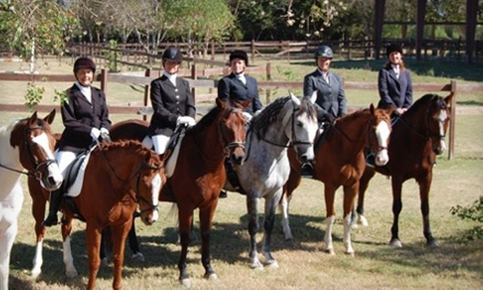 Southern Breeze Equestrian Center - Pearland: $30 for Horse-Riding Lesson ($65 Value) or $20 for Intro to Horses Course ($40 Value) at Southern Breeze in Fresno