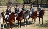 Southern Breeze Equestrian Center, Inc - Pearland: $30 for Horse-Riding Lesson ($65 Value) or $20 for Intro to Horses Course ($40 Value) at Southern Breeze in Fresno
