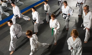 Bressaw's Karate: Four or Eight Karate Classes with Uniform at Bressaw's Karate (Up to 83% Off)