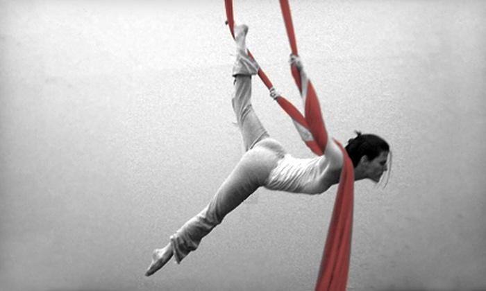 CirqueFit - West Dallas: 5 or 10 CirqueFit Aerial Cirque-Arts and Yoga Classes at Cirque Duo Studios