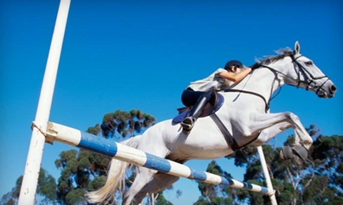 Rimerock Farms LLC - Marlborough: $68 for Four Thirty-Minute Horseback-Riding Lessons at Rimerock Farms LLC in Marlborough ($140 Value)