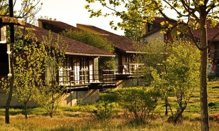Sierra de Gredos: 1, 2 o 3 noches para 2 o 4 personas en cabaña con cesta de frutas bio en La Hospedería del Silencio