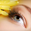 $6 for Eyebrow Threading at Beauty by Thread