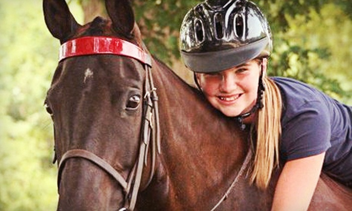 Lenux Stables & Riding Academy, Inc. - Huntersville: Three or Five 30-Minute Beginner Riding Lessons at Lenux Stables & Riding Academy, Inc. (Up to 56% Off)