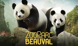 Zoo Parc de Beauval: Entrée adulte ou enfant pour le ZooParc de Beauval, l'un des 15 plus beaux zoos au monde, à 19,50 €