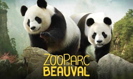Entrée adulte ou enfant pour le ZooParc de Beauval, l'un des 15 plus beaux zoos au monde, à 19,50 €