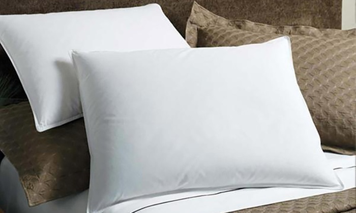 BDirect: Duck or Goose Feather and Down Pillows: Two ($25) or Four ($45) (Don't Pay up to $258)