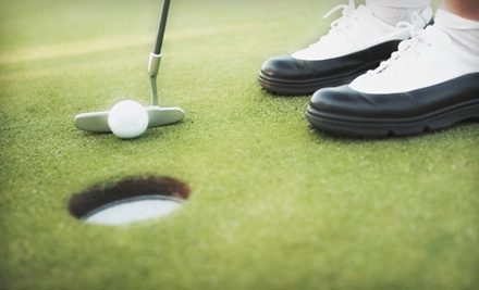 1 Private Lesson (a $100 value) - Robb Nunn from Golf Equation Swing Academy in Lake Forest