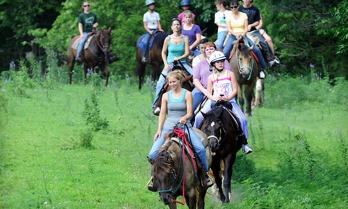 Wild Rose Equine Center - Dearborn: $15 for a One-Hour Horseback Trail Ride at Wild Rose Equine Center in Dearborn ($30 Value)