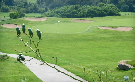 Individual Golf Outing (Up to a $70.95 Value) - Canyon West Golf Club in Weatherford