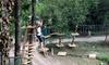 Ingresso Parco Avventura sul Garda
