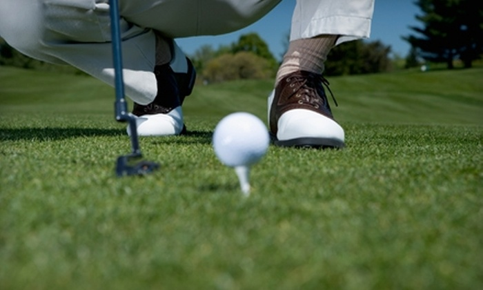 Simon Fagan Golf - Richardson: $55 for a One-Hour Custom Golf Lesson from Simon Fagan Golf in Richardson ($125 Value)