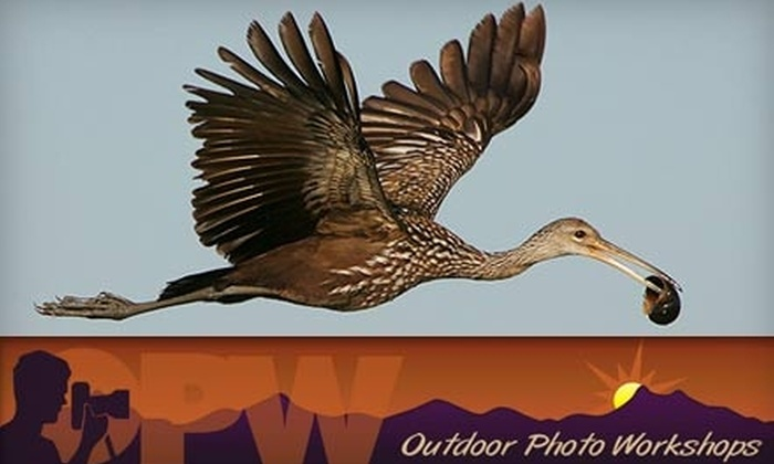 Outdoor Photo Workshops - Greater Pinellas Point: $59 for One Enrollment in Total Exposure: The Ultimate Nature Photography Crash Course at Outdoor Photo Workshops